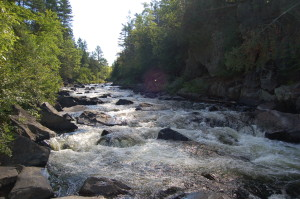 Horserace Rapids