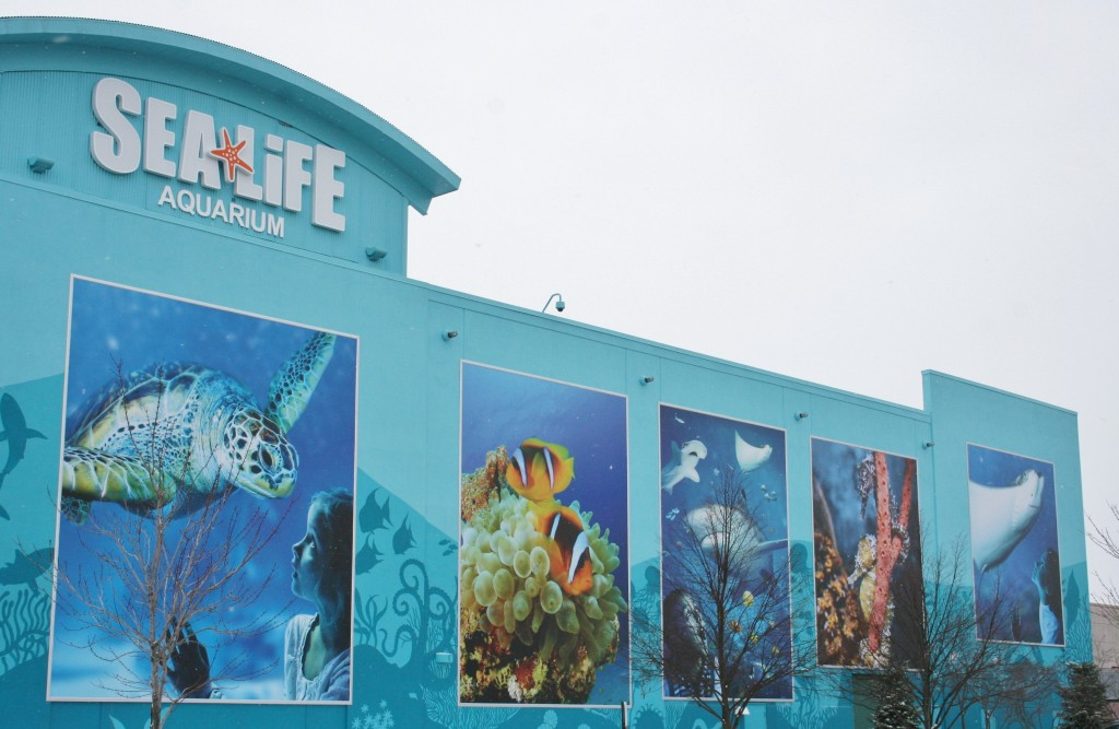 Outside of Michigan Sea Life Aquarium