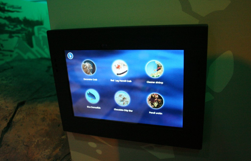 Aquarium has Interactive Tablets Throughout to Learn More About the Animals in the Aquarium