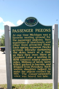 Michigan Passenger Pigeons marker
