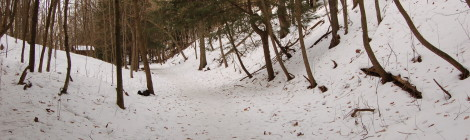 Michigan Trail Tuesday: Saugatuck Dunes State Park