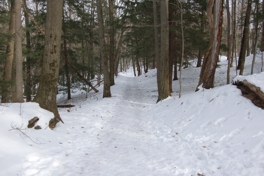 Saugatuck Dunes Winter Trail