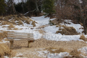 State Park Bench Saugatuck Winter