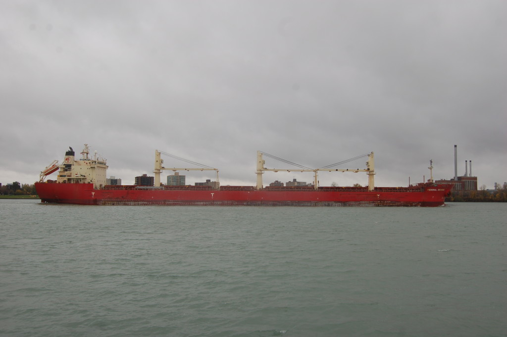 Federal Oshima (Fednav International) passing Belle Isle