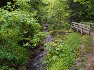 Munising Creek footpath