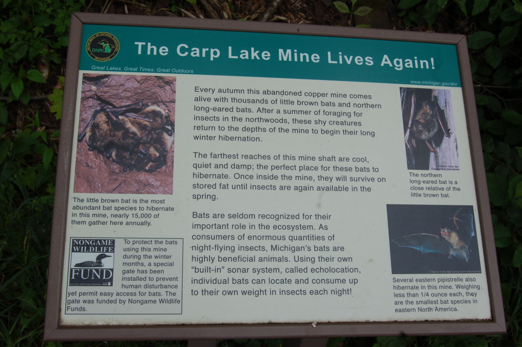 Information Sign for Carp Lake Mine