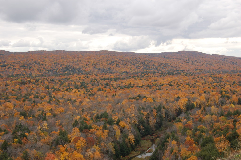 Fall Color from Lake of the Clouds overlook