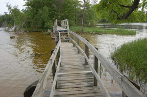 Ludington State Park Hike Bridge