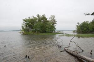 Ludington State Park Hike Island