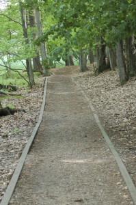 Ludington State Park Hiking Trails