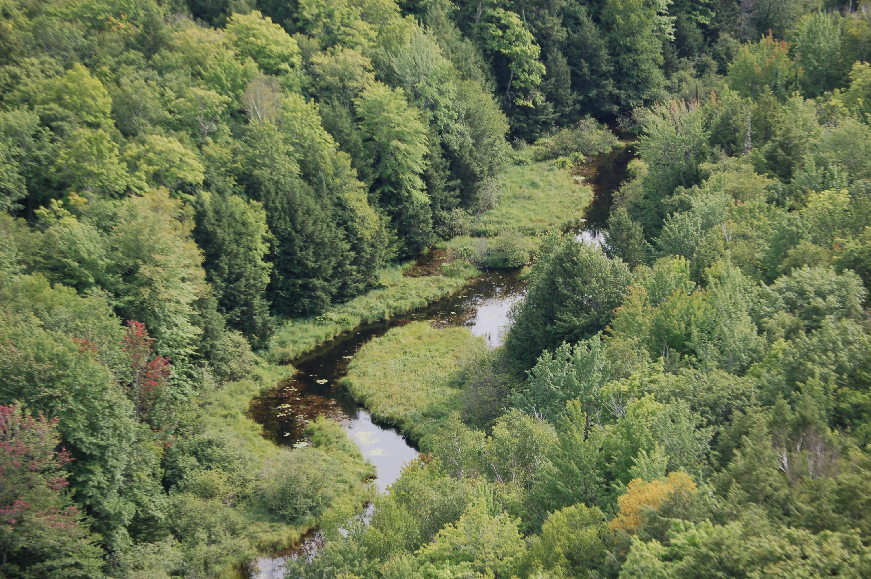 Is Michigan S Porcupine Mountains Wilderness State Park