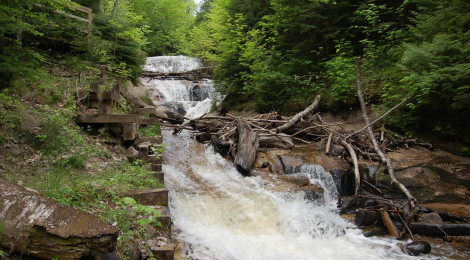 2020 Was a Record Year for Pictured Rocks National Lakeshore