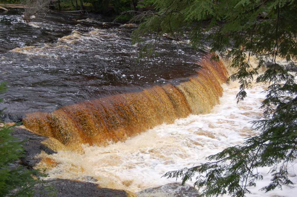 Tannins Lower Falls Tahquamenon