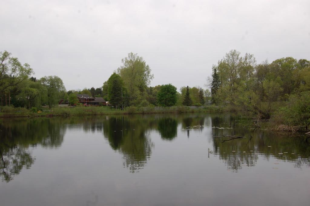 House reflection Pickerel Lake