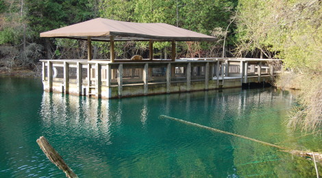 """Photo Gallery Friday: Visit the """"Big Spring Kitch-iti-kipi"""" at Palms Book State Park"""