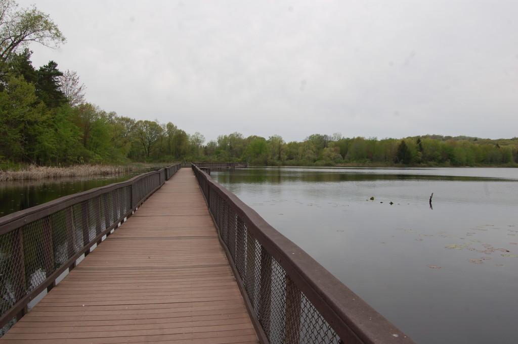 Pickerel Lake Kent County