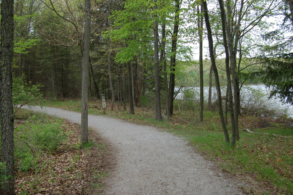 Pickerel Lake Kent County Hiking Path