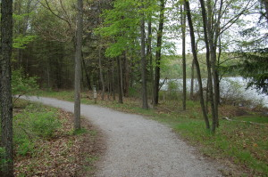 Pickerel Lake Kent County Hiking Path