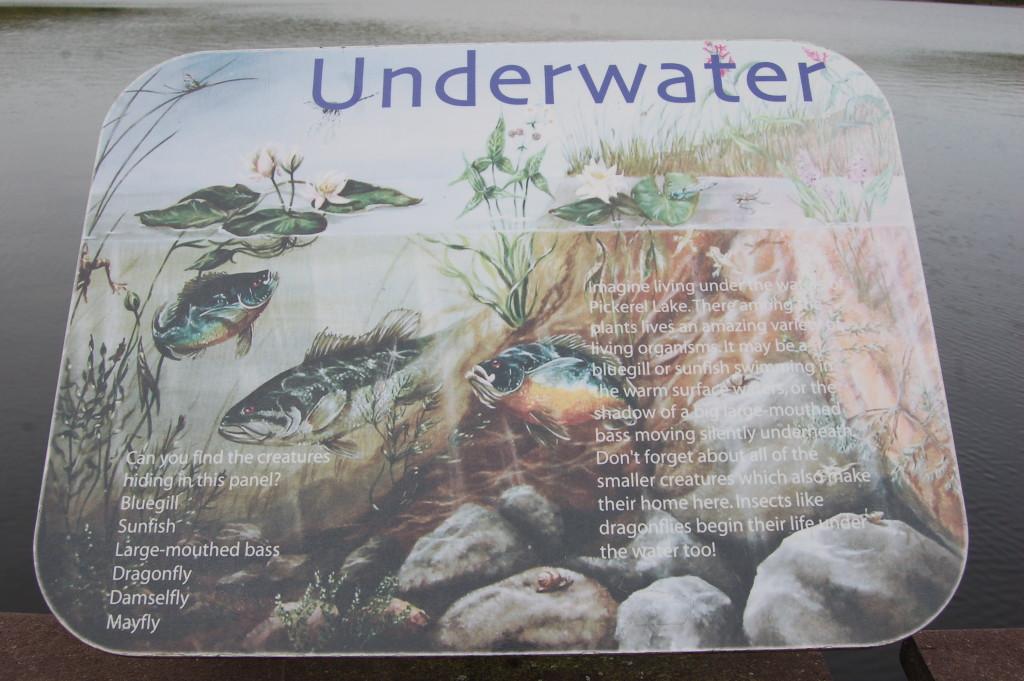 Sign Pickerel Lake Fish