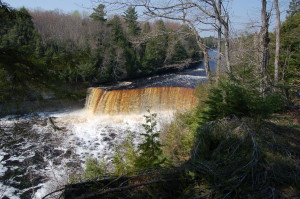 Tahquamenon Falls Distant View Michigan