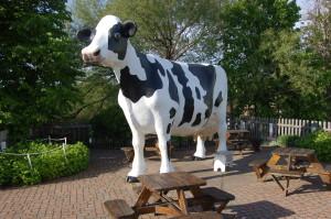 Jilbert Dairy Cow Marquette Michigan