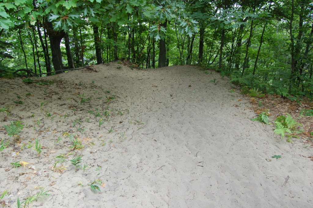 Mt. Baldy Dune Petoskey State Park