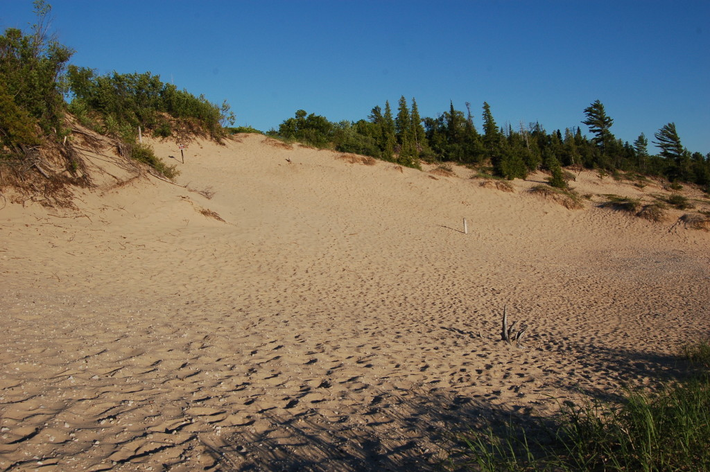 Petoskey State Park Dunes