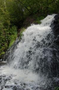 Vertical Waterfall Warner Falls Michigan