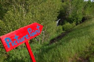 Warner Falls Picture Point Roadside Waterfall
