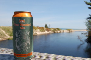 Michigan's Two Hearted River
