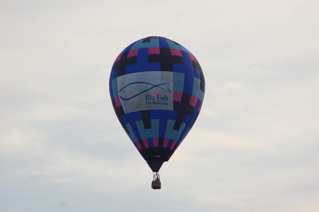 Blu Fish Balloon Battle Creek MI
