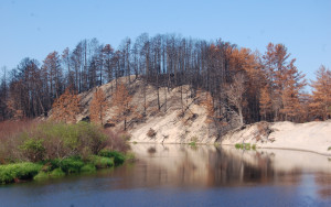 Two Hearted River fire damage 2012