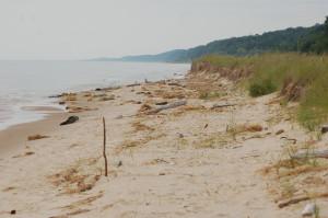 Beach Lake Mich North Ottawa Dunes
