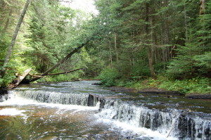 Haymeadow Falls Creek View Michigan