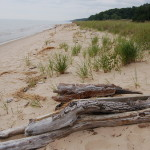 North Ottawa Dunes – Beautiful Hiking Trails in Ottawa County