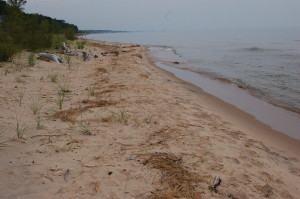 Lake Michigan North Ottawa Dunes Trail