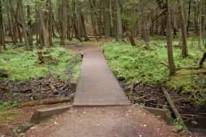 Piers Gorge Hiking Trail Michigan