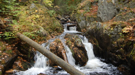 Reany Falls - A Roadside Waterfall in Marquette County