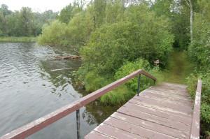 Bewabic State Park Hiking Bridge Iron County
