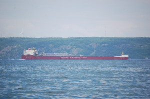 Freighter Passing Point Iroquois Michigan