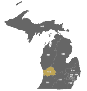 Michigan Area Codes