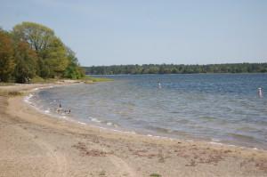 Muskallonge SP Lake Swimming Area