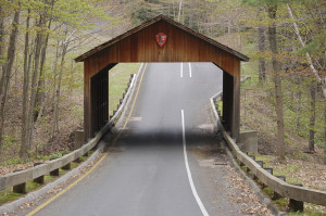 Pierce Stocking Scenic Drive Fall