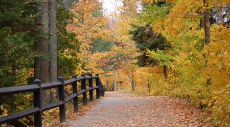 Photo Gallery Friday: Fall Color in Michigan - Our Favorite Photos