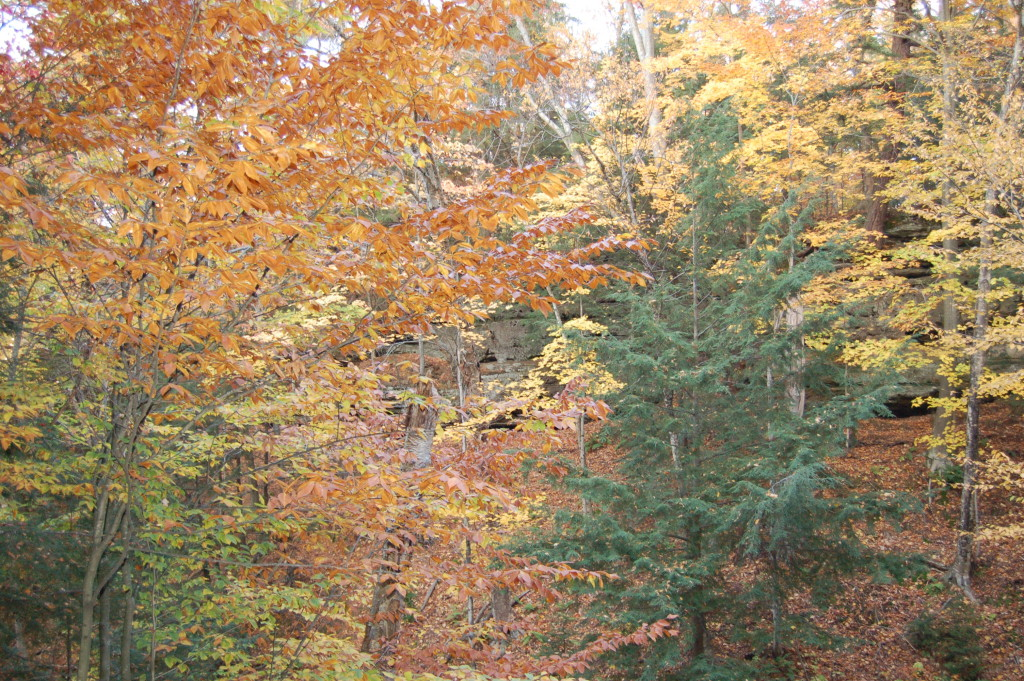 Fall Color Munising Michigan