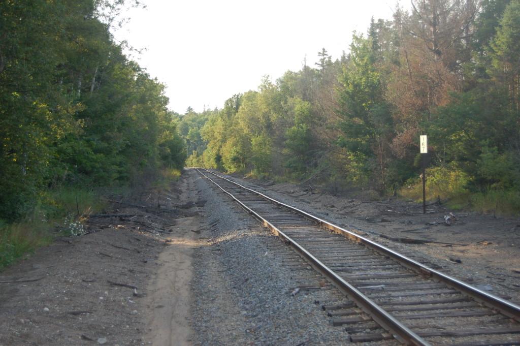 Van Riper State Park Railroad Tracks