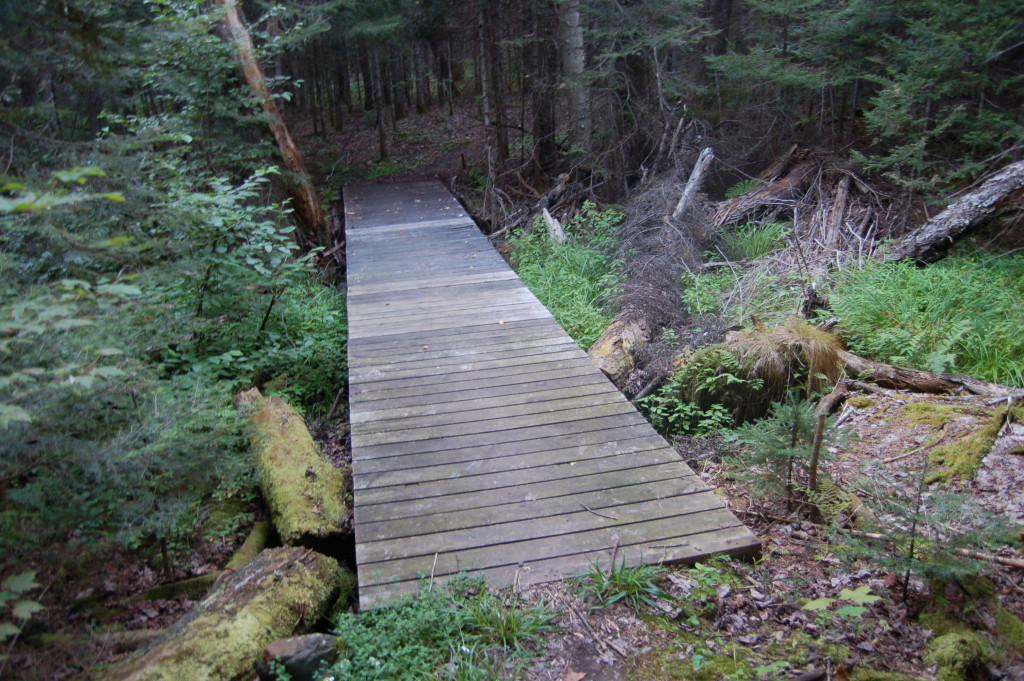 Van Riper State Park Trail Bridge