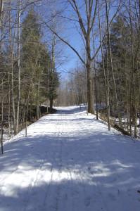 Deerfield Nature Park Top of Post