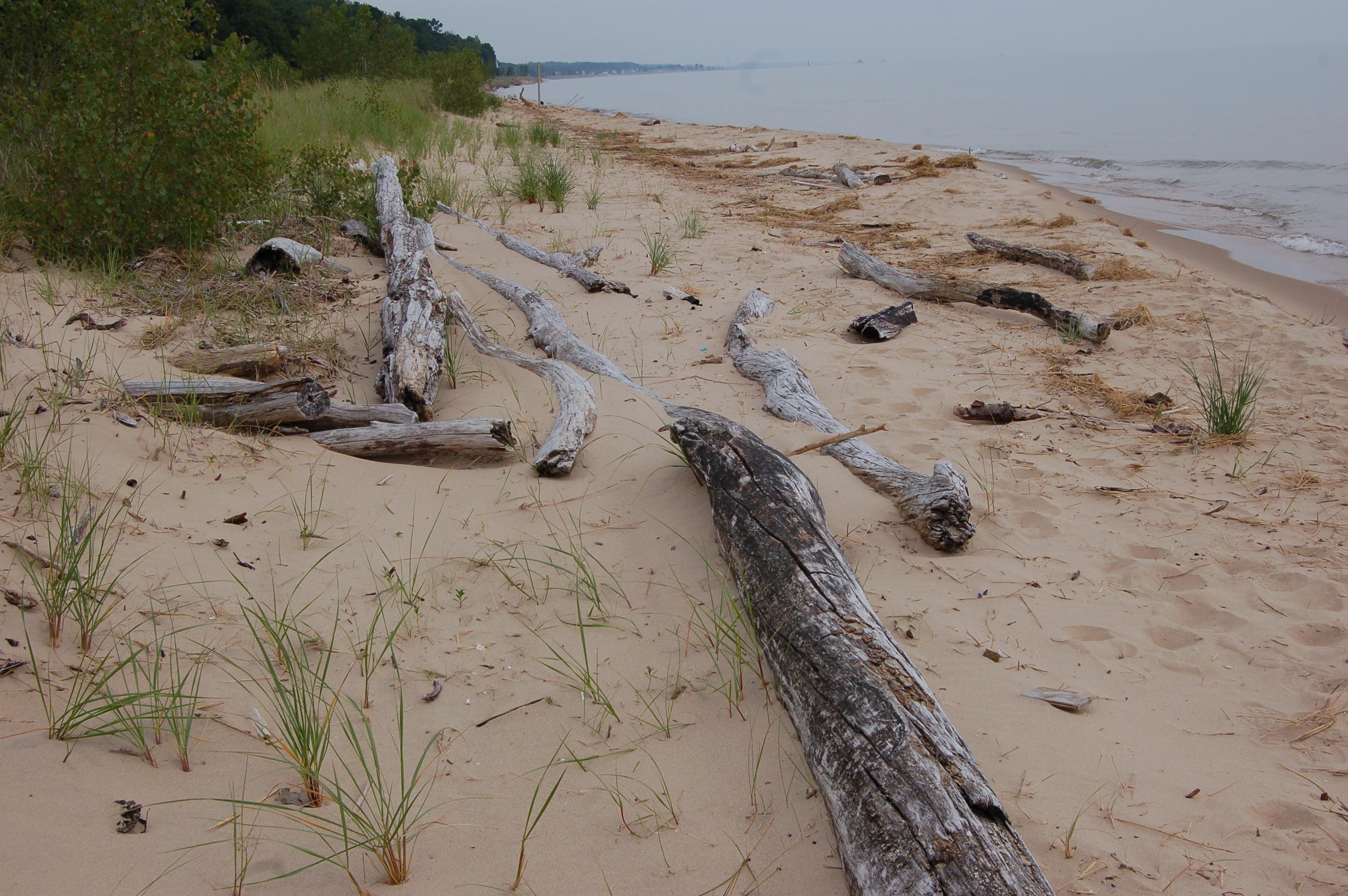 Lake Michigan North Ottawa Dunes