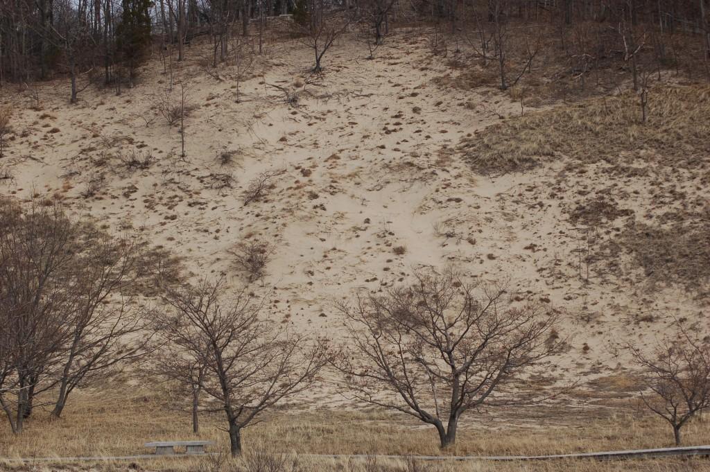 Rosy Mound Dunes Ottawa County